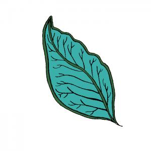 LeaficonforCCOLvolunteer