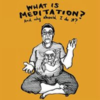 What is Meditation by Matthew Brown