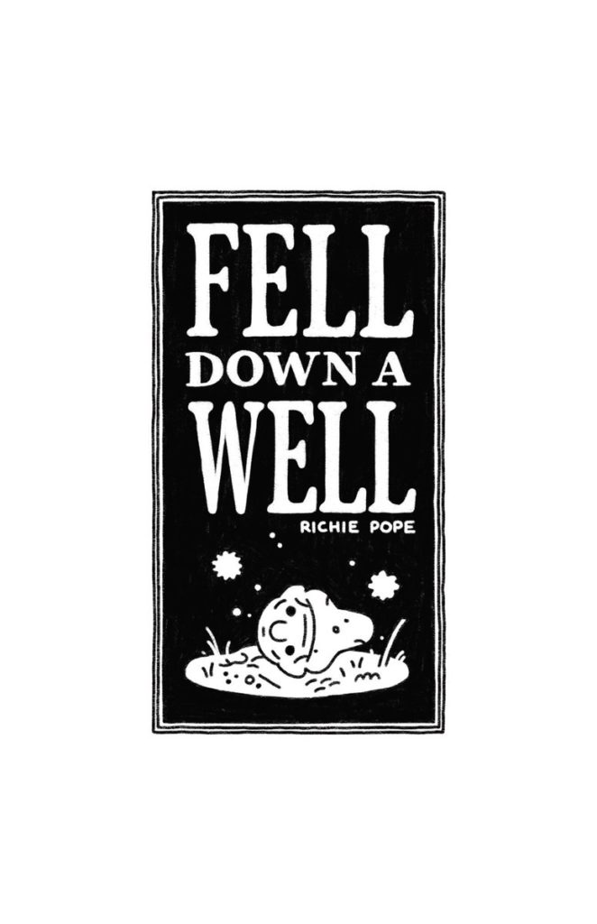 Fell Down A Well by Richie Pope